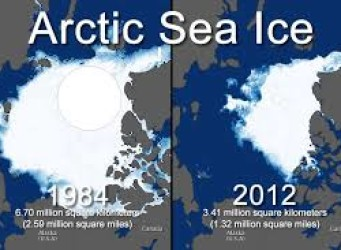 Do You Really Care About Sea Ice?