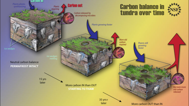 Could Thawing Permafrost Doom the Planet?